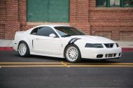 2004 ford mustang terminator cobra oxford white 1 190x126 Tuning am Ford Mustang Cobra in Oxford Weiß