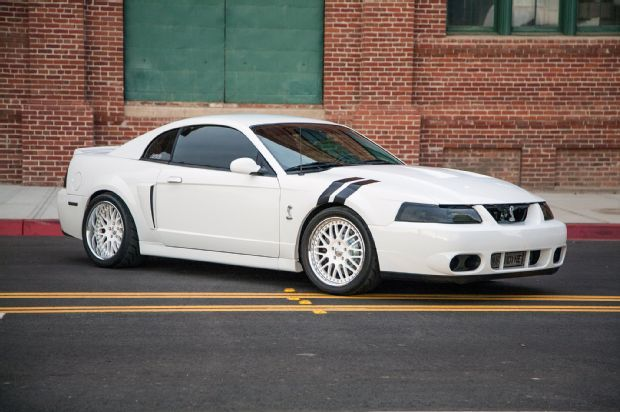 2004 ford mustang terminator cobra oxford white 1 Tuning am Ford Mustang Cobra in Oxford Weiß