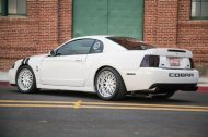 2004 ford mustang terminator cobra oxford white 3 190x126 Tuning am Ford Mustang Cobra in Oxford Weiß