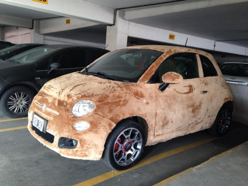 fiat-500-wrapped-in-fur-spotted-in-argentina-2