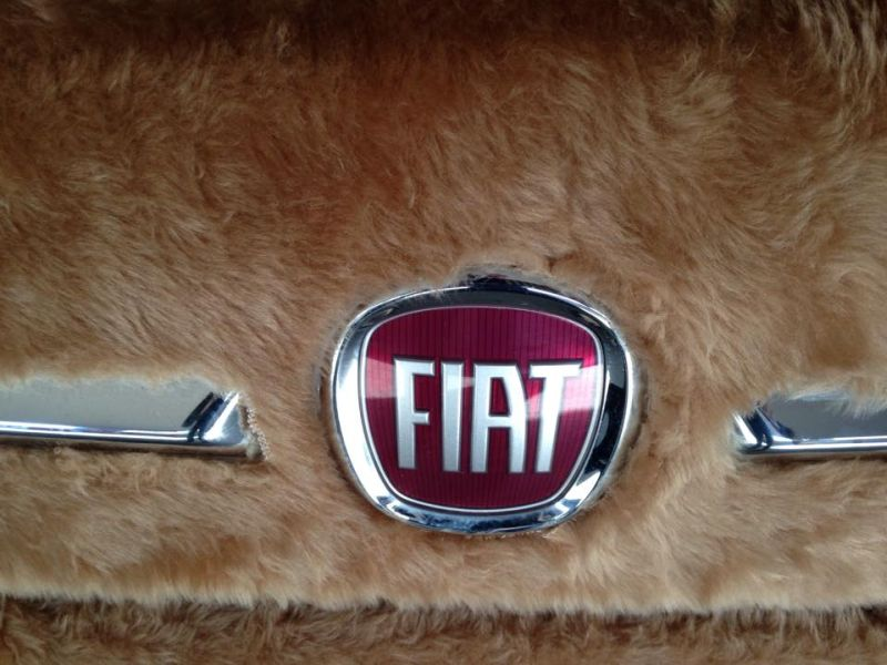 fiat-500-wrapped-in-fur-spotted-in-argentina-3