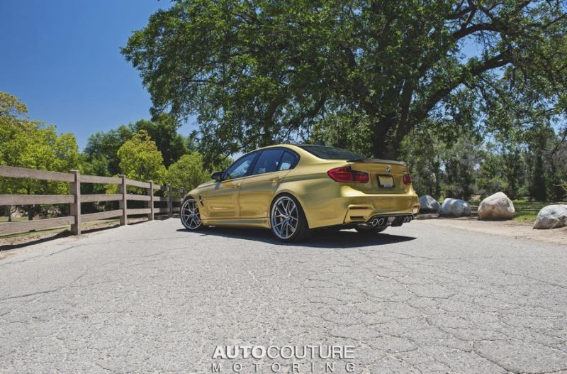Austin-Yellow-BMW-F80-M3-Build-By-AUTOCouture-Motoring-13