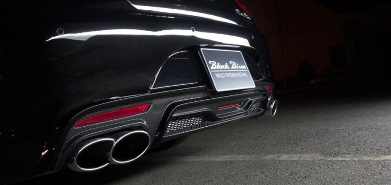 wald-s-class-black-bison-3