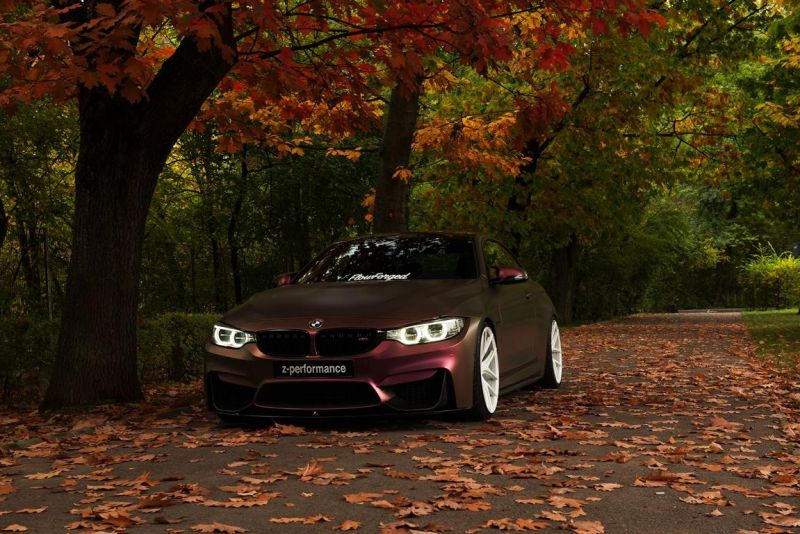 11227407 743669352405150 1342700001951933611 o Z Performance FlowForged 2k16 am BMW M4 F82