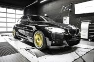 BMW 220i 2.0 Turbo Mcchip DKR MC320 3 190x127 Bis zu 360PS im BMW 220i 2.0 Turbo by Mcchip DKR   MC320