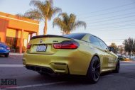 F83 BMW M4 Evolution Racewerks Chargepipes Injen Intake 14 190x127 ModBargains BMW M4 F83 mit Injen Kit & mehr Power!