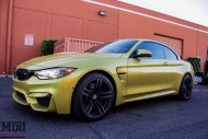F83 BMW M4 Evolution Racewerks Chargepipes Injen Intake 16 190x127 ModBargains BMW M4 F83 mit Injen Kit & mehr Power!