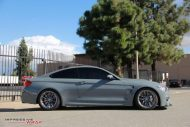 12371042 1078016452219039 4246650561058118407 o 190x127 Dolphin Grey am BMW M4 F82 by Impressive Wrap
