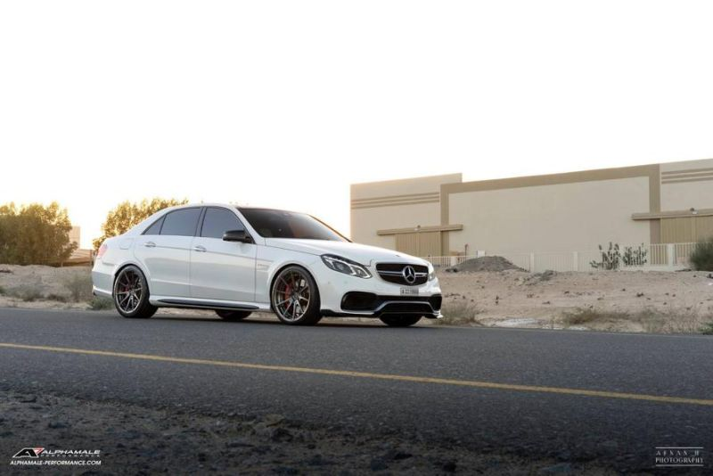 Mercedes Benz E63 AMG Alphamale Performance AMP 5S 2 Edel   Mercedes Benz E63 AMG by Alphamale Performance