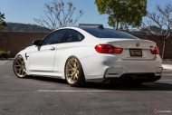 Supreme Power BMW M4 F82 HRE R101 Tuning 15 190x127 Top   Supreme Power BMW M4 F82 auf HRE R101 Alu's