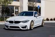 Supreme Power BMW M4 F82 HRE R101 Tuning 5 190x127 Top   Supreme Power BMW M4 F82 auf HRE R101 Alu's