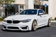 Supreme Power BMW M4 F82 HRE R101 Tuning 6 190x127 Top   Supreme Power BMW M4 F82 auf HRE R101 Alu's