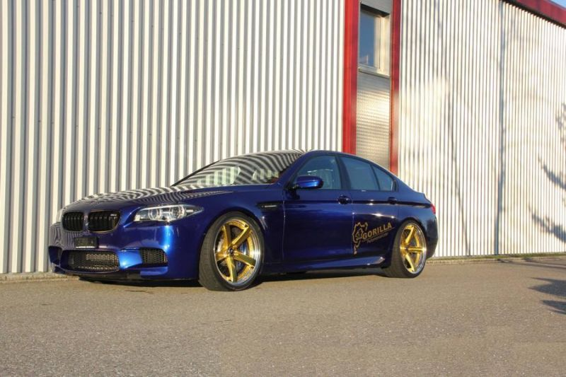 BMW M5 F10 20 Zoll Work Wheels Zeast Felgen 1 BMW M5 F10 in Blau auf goldenen 20 Zoll Work Wheels Alu's
