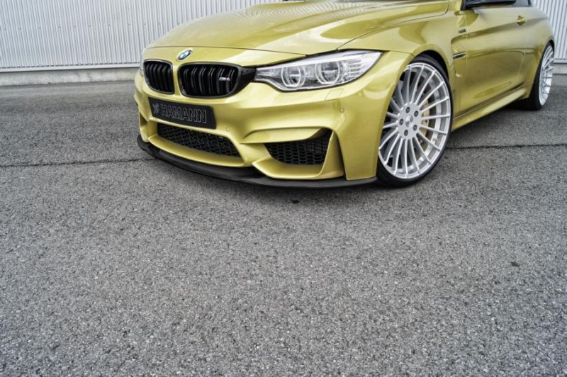 Hamann BMW M4 F82 Coupe Tuning (40)