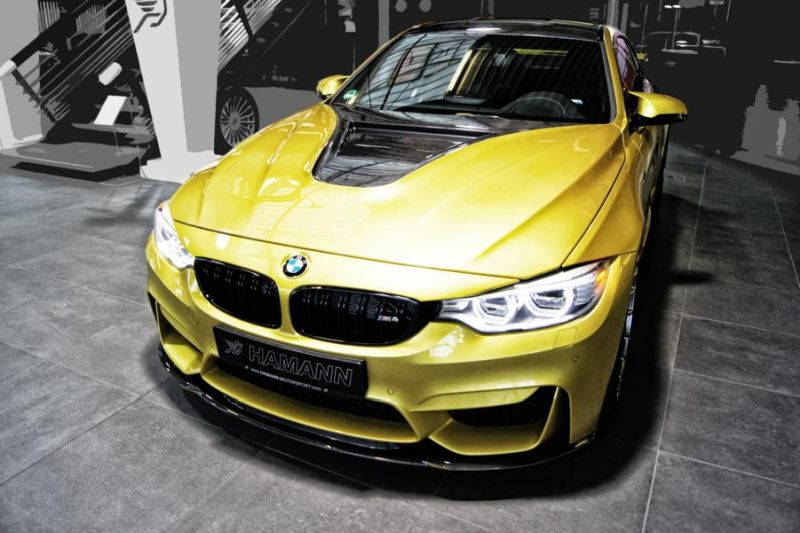Hamann BMW M4 F82 Coupe Tuning (66)