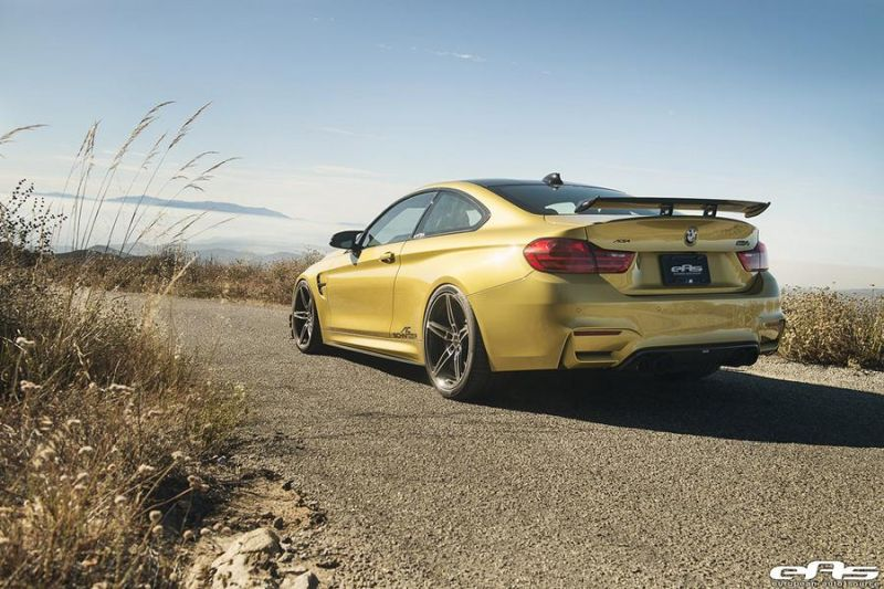 AC-Schnitzer-ACS4-European-Auto-Source-BMW M4 F82 Tuning EAS (15)