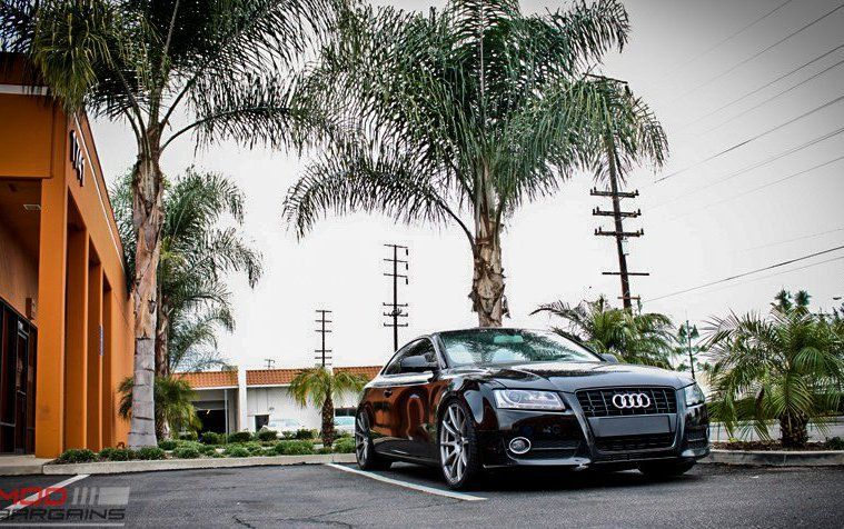 19 Zoll Forgestar CF10 Tuning ModBargains Audi A5 Coupe KW 1 19 Zoll Forgestar CF10 Alu's am ModBargains Audi A5 Coupe