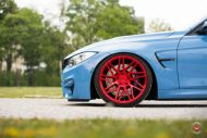 20 Zoll Vossen VPS 314T Alu's Tuning BMW F80 M3 in Yas Marina Blau 2016 46 190x127 20 Zoll Vossen VPS 314T Alu's am BMW F80 M3 in Yas Marina Blau