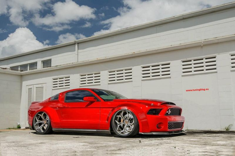 Shelby Super Snake tuning 2016 (2)