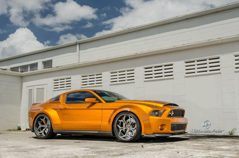 Shelby Super Snake tuning 2016