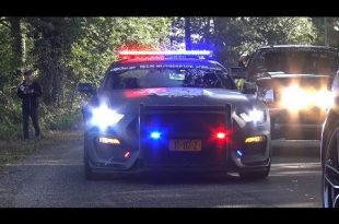 ford-mustang-shelby-gt350-polizeifahrzeug-tuning-2
