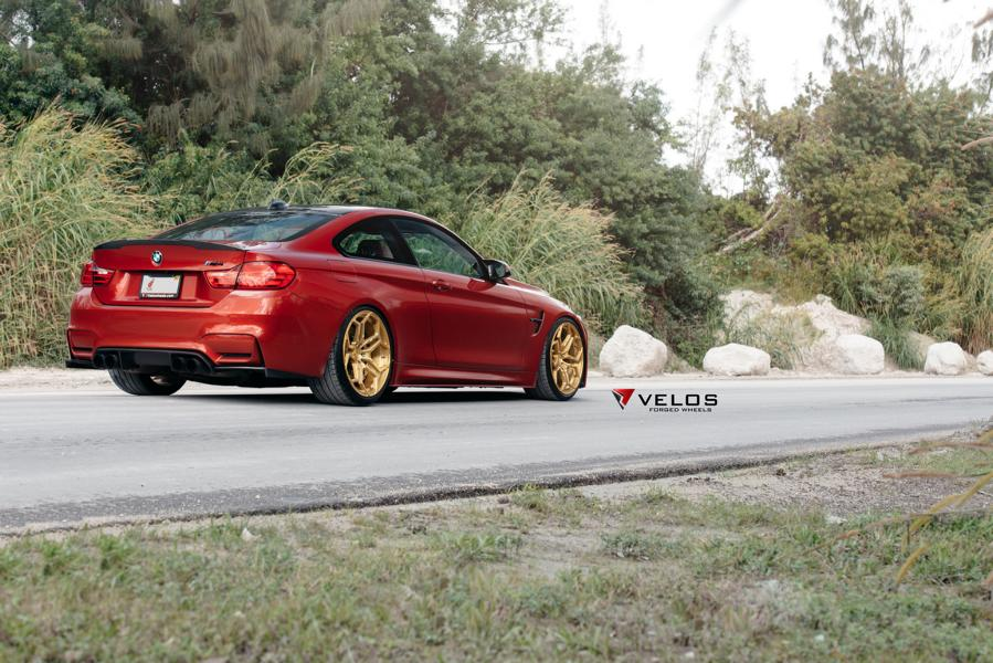 Sakhir Orange BMW M4 Loaded With Aftermarket Parts 2 20 Zoll Velos XX Schmiedefelgen am BMW M4 F82 Coupe
