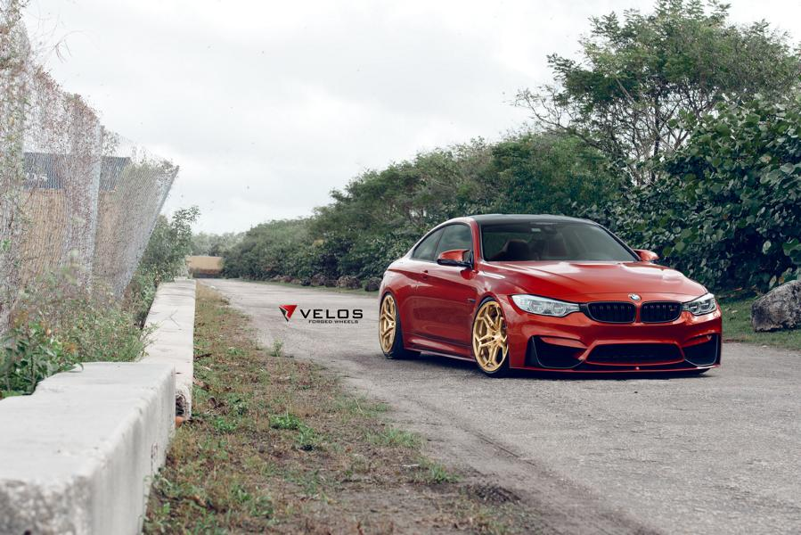 Sakhir Orange BMW M4 Loaded With Aftermarket Parts 5 20 Zoll Velos XX Schmiedefelgen am BMW M4 F82 Coupe