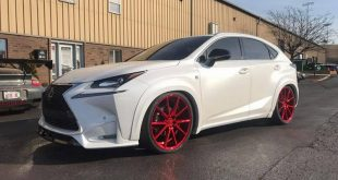 Auto Arts Project Paper Bagged Lexus NX200T 4 310x165 Mercedes Benz AMG GTS Ghost by Auto Art aus Illionois