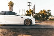 BMW M2 F87 Coupe 19 Zoll ZF02 Zito Wheels Tuning 3 190x127 Dezent   BMW M2 F87 Coupe auf 19 Zoll ZF02 Zito Wheels