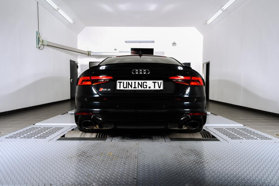 Speed Buster Audi RS5 B9 Tuningbox 1 Da geht was   Speed Buster Audi RS5 mit 532 PS & 700 NM