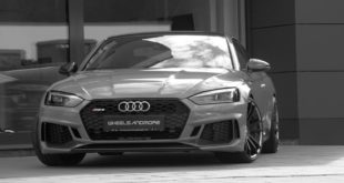 Wheelsandmore أودي RS5 B9 ضبط 9 310 165x23 Zoeller و710 PS بنتلي Bentayga التي كتبها Wheelsandmore