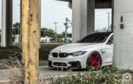 BMW M4 Coupe F82 ADV10 M.V2 Felgen Tuning 17 190x120 702 PS am Rad im BMW M4 Coupe auf ADV10 M.V2 Felgen