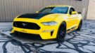 Steeda Ford Mustang GT Q500 Enforcer Tuning 2018 14 135x76 Dampfhammer Steeda Ford Mustang GT Q500 Enforcer