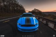 Shelby Ford Mustang GT500 CCW Felgen Tuning 13 190x127 Fotostory: Shelby Ford Mustang GT500 auf CCW Felgen