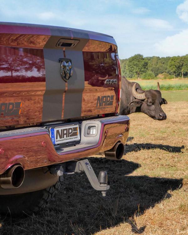 Dodge Ram 1500 ORZ Vehicles Ram Requite Tuning 5 Fällt auf   Dodge Ram 1500 ORZ Vehicles Ram Requite