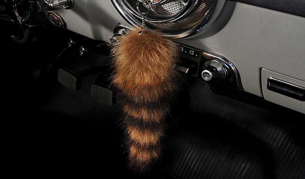 Fuchsschwanz Antenne Innenspiegel Tuning 2 Fuchsschwanz Tuning und Blumenvase: Verzierung für das Auto