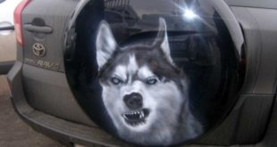 Spare wheel cover Spare wheel protection emergency wheel cover 2 310x165 The E power plant in the car Modify the alternator