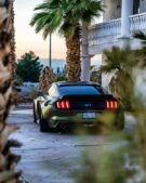 Dapper Grinch Clinched Widebody Ford Mustang GT Tuning 13 135x169 Dapper Grinch Clinched Widebody Ford Mustang GT!