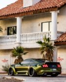 Dapper Grinch Clinched Widebody Ford Mustang GT Tuning 14 135x169 Dapper Grinch  Clinched Widebody Ford Mustang GT!