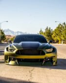 Dapper Grinch Clinched Widebody Ford Mustang GT Tuning 30 135x169 Dapper Grinch Clinched Widebody Ford Mustang GT!