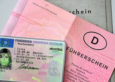 Driver's license pink gray EU exchange The new driver's license is coming: These deadlines apply to exchanges!