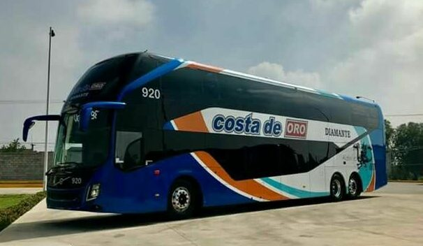 Coach driver's license e1611659282862 The new driver's license is coming: These deadlines apply to exchanges!